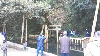 鹿島神宮4.jpg